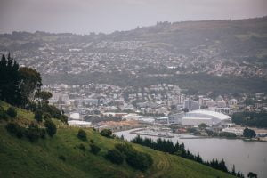 Read more about the article Dunedin's hidden forest retreat is utterly divine